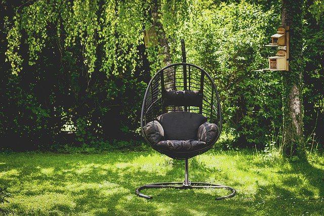 oaza na dvorišču